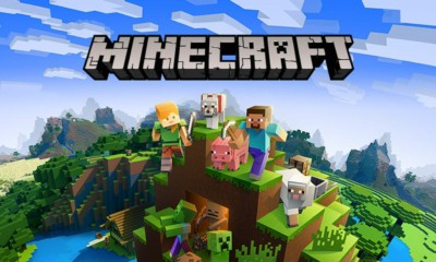 Minecraft Game Information