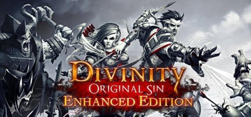 Best Split Screen PS4 Games - Divinity Original Sin
