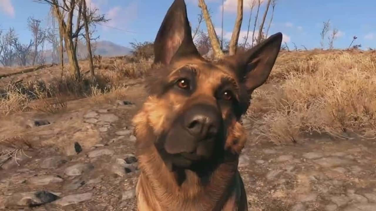 Best Fallout 4 Mods - Stronger Dogmeat